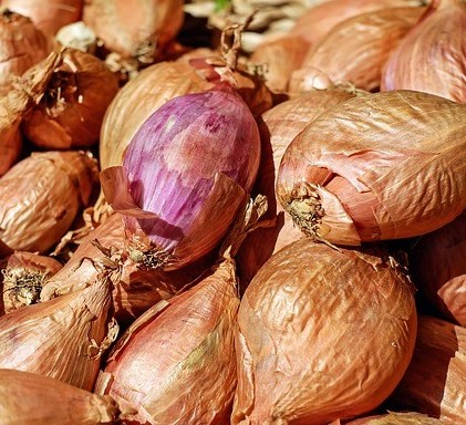 Shallots. Photo by Couleur