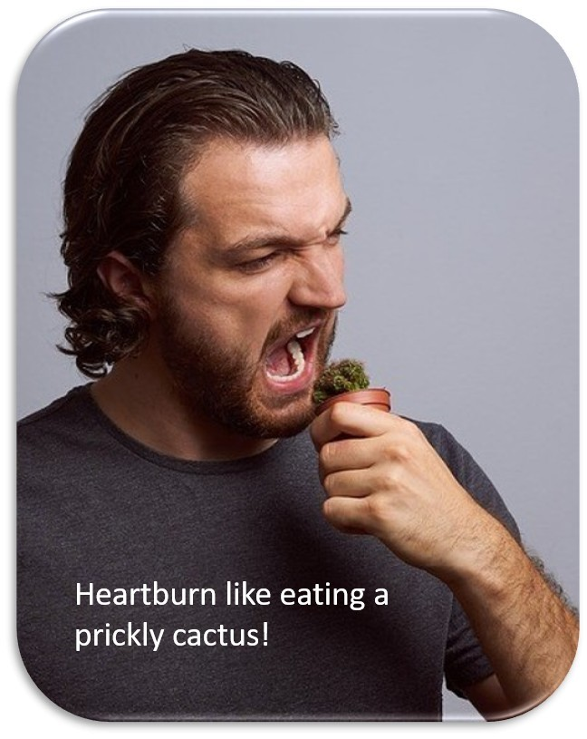 Heart burn like eating a prickly cactus!
