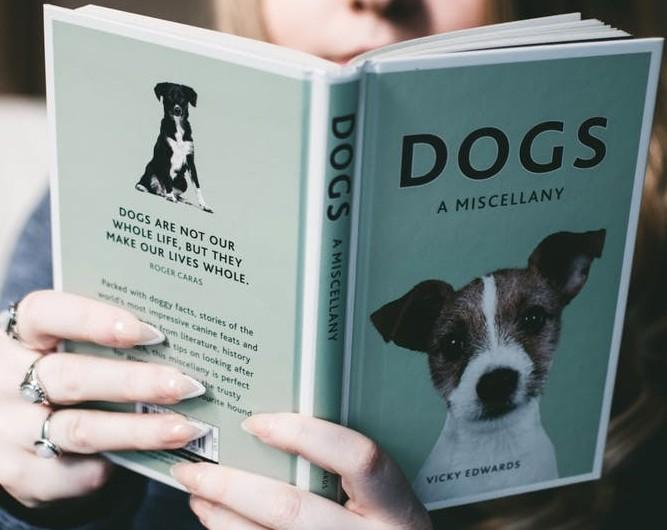 dog book
