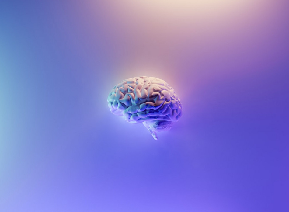 The brain train of intuitive gifts