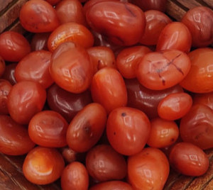 Red carnelian energy of the root chakra