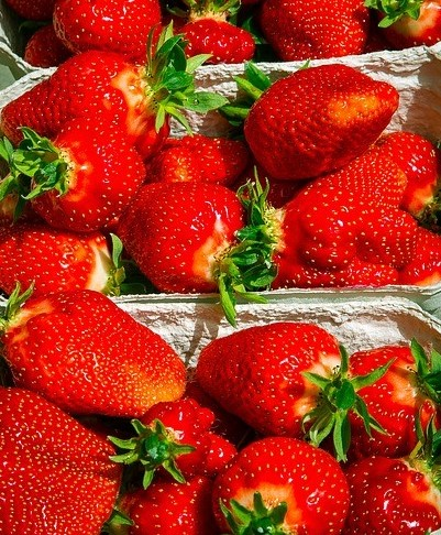 fresh vibrant strawberries