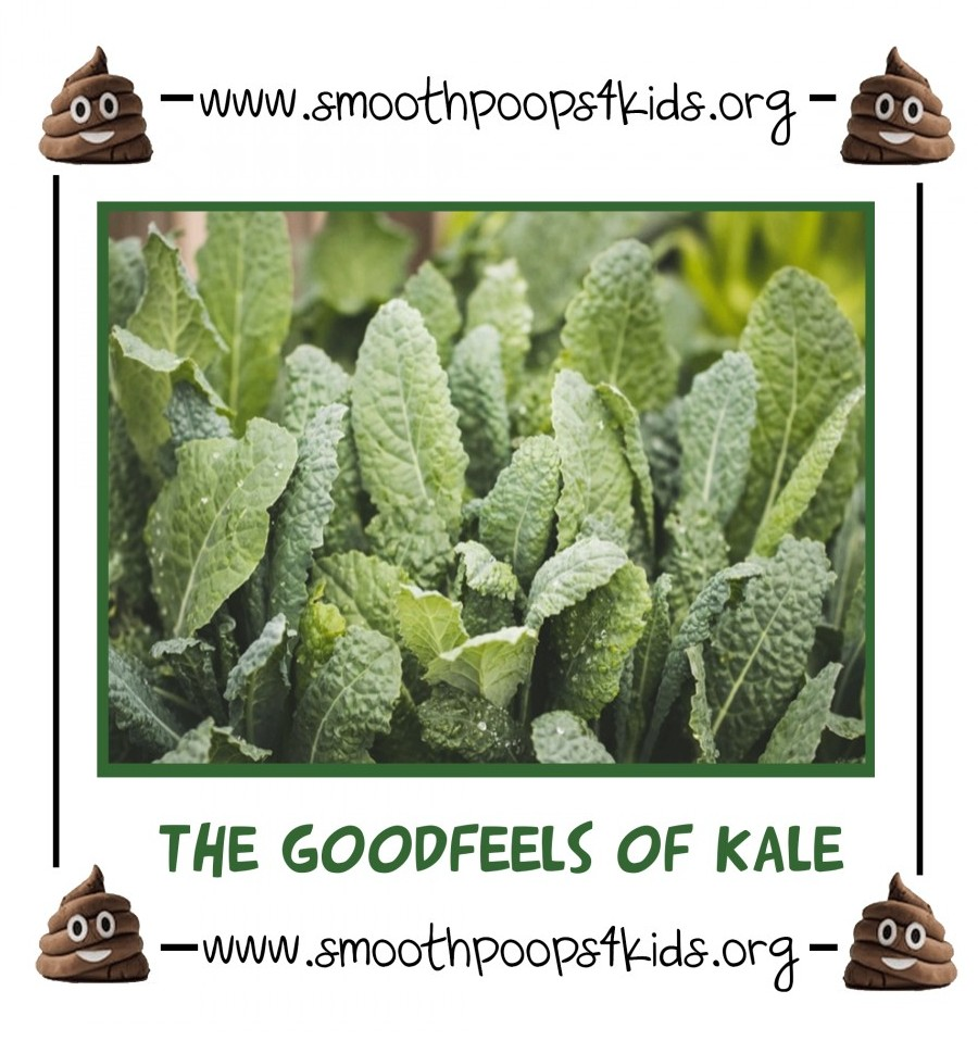 the good feels of kale