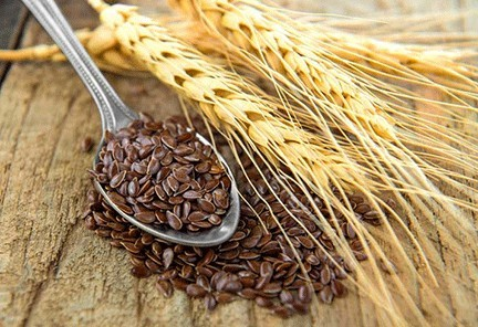 what is flaxseed