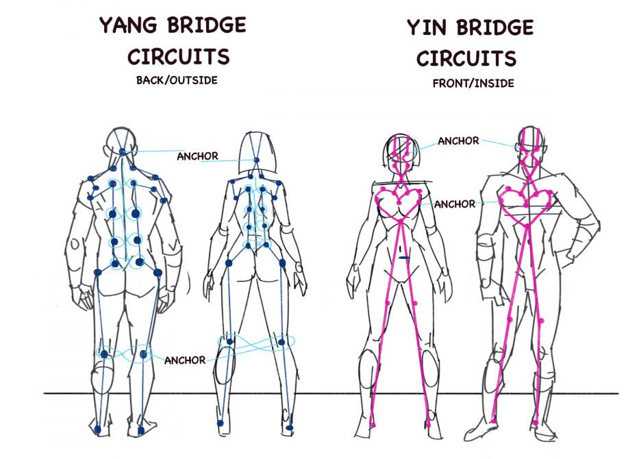 The bridge circuits