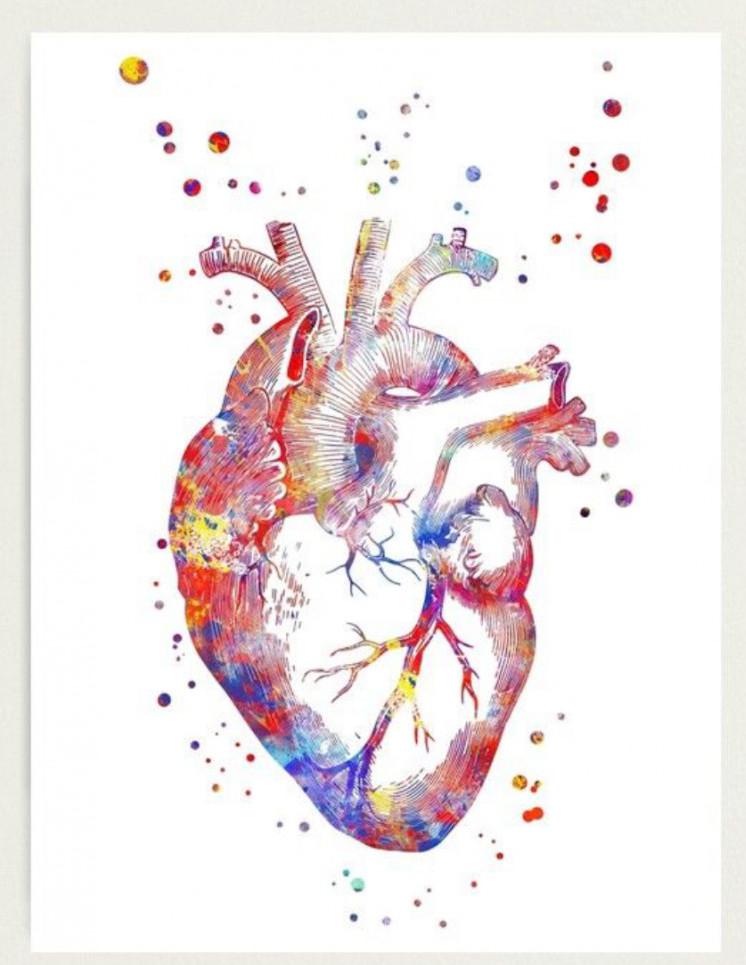 Human heart intelligence