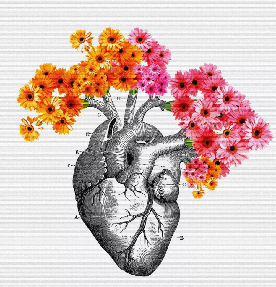 The human heart intelligence grows