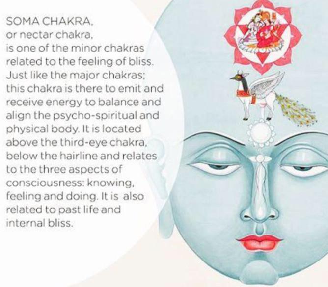 Chakra bodies