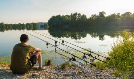 Carp Fishing Tips - Carp Swimming in Weed (1)