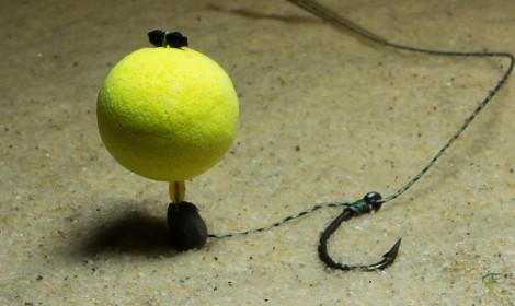 Best hook bait for method feeder fishing - pop-up underwater