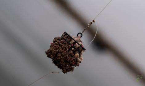 Feeder Fishing for Carp - Cage Feeder