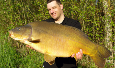What Does a Carp Look Like - leather carp