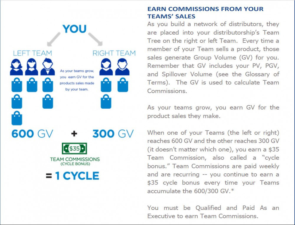Jeunesse Review - Team Commissions