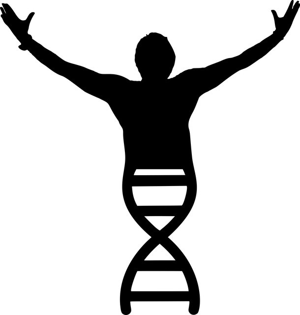 DNA Integrity
