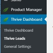 thrive leads tab in dashboard