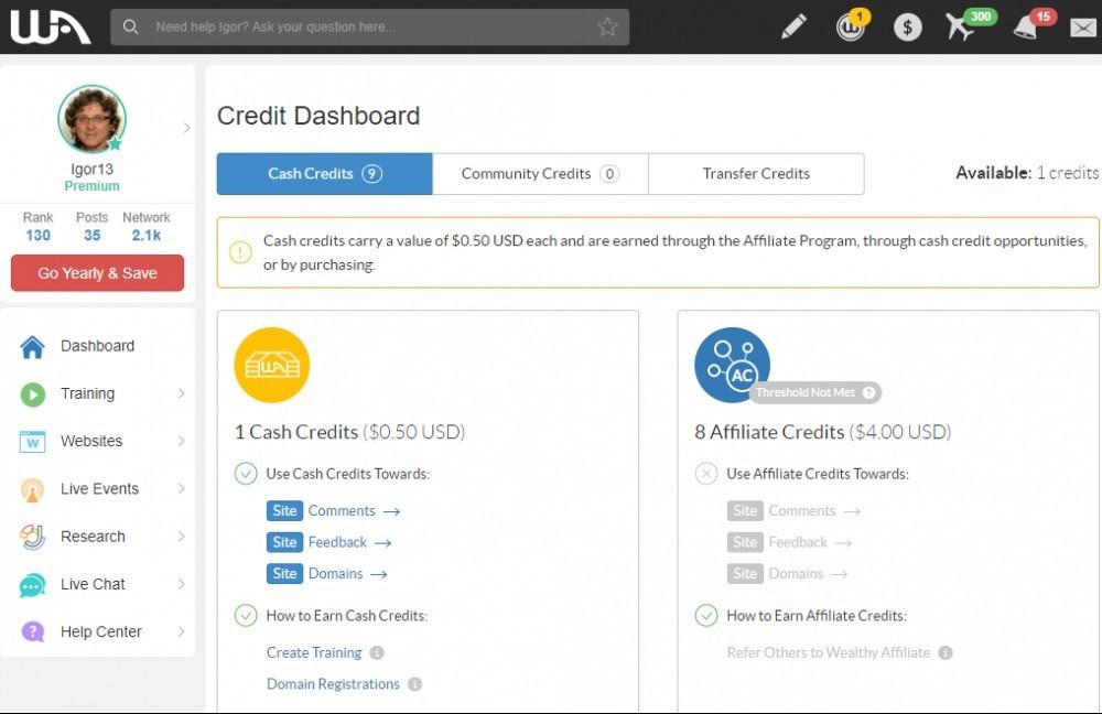The Wealthy Affiliate Dashboard-Credit Dashboard