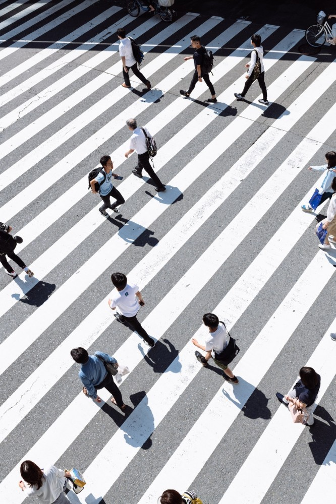 How to make money from home for free-People walking over the zebras on the street
