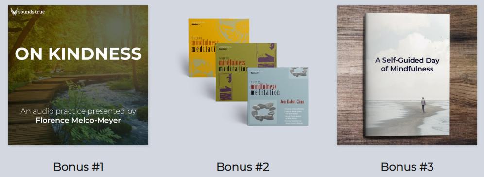 MBSR Online Course - Bonuses