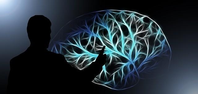 How Does The Meditation Program Works