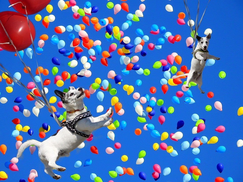 painting of dogs floating in the sky with balloons