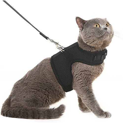 This Is A Neat Harness From The Best Reviews For Cat Harnesses