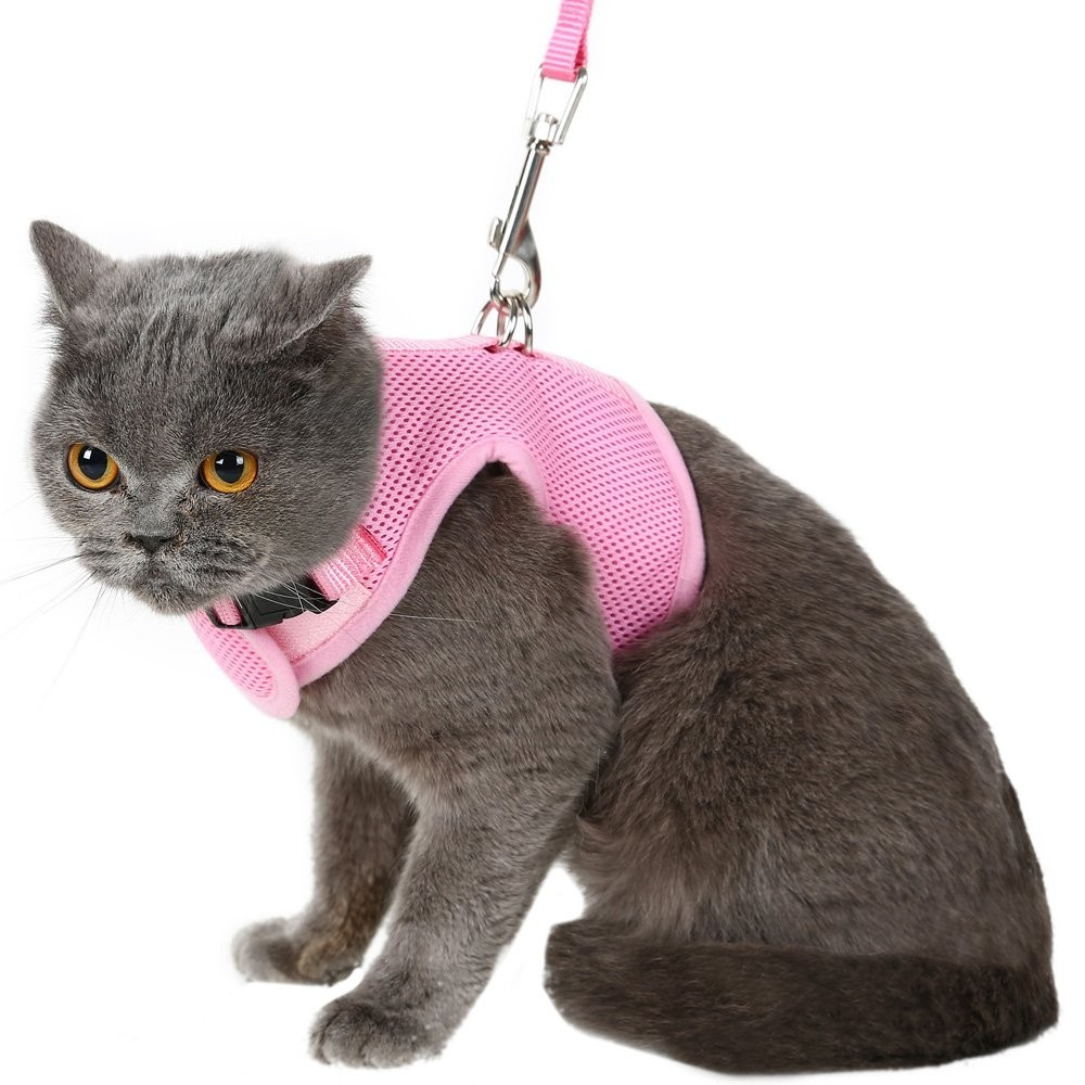 This Is Pretty Pink Harness From The Best Reviews For Cat Harnesses