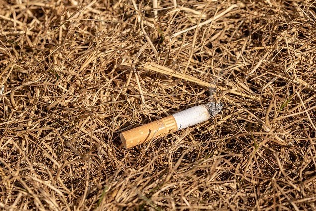 walking and hiking safety tips, image shows a cigarette butt thrown in dry grass