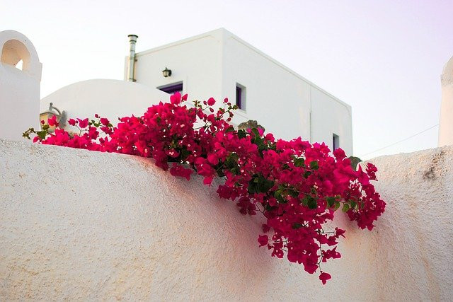 what-is-the-cost-of-living-in-Crete-image-of-a-house-with-red-flowers-