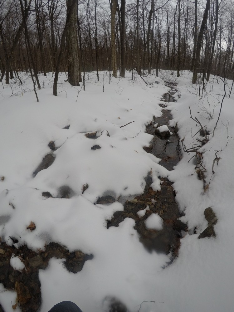 Along the Appalachian Trail headed to Mount Cube New Years Day