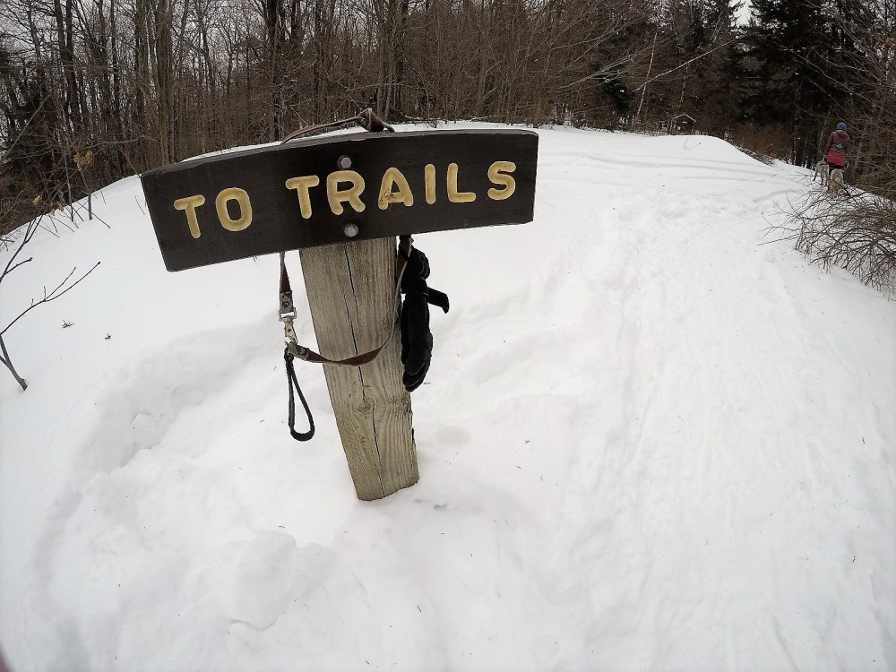 To Trails signage