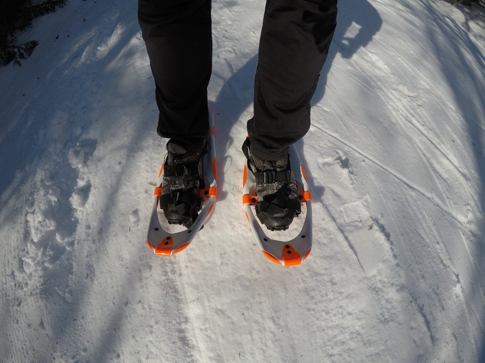 Dion racing snowshoes