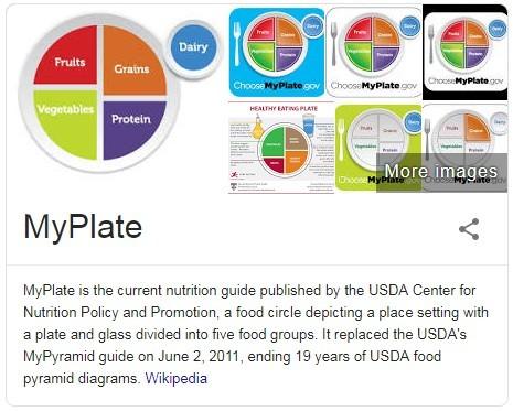 My Plate Basics