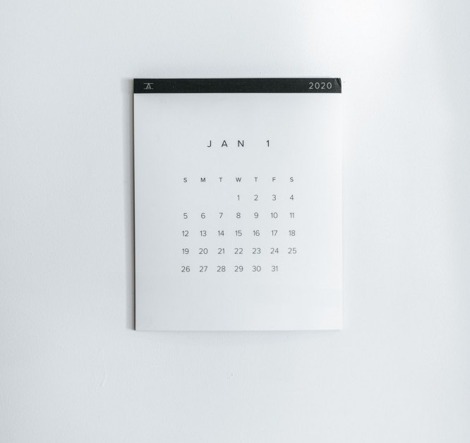 January Calendar for Monthly Deworming of Cats