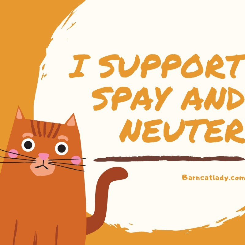 I Support Spay and Neuter Barncatlady.com Graphic