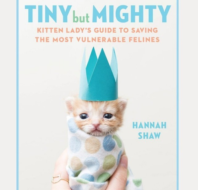 The Tiny But Mighty Book Cover