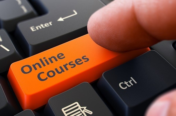 Online Courses make money