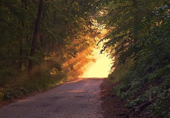 Path with sun light