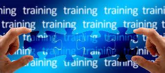 Shopify Training