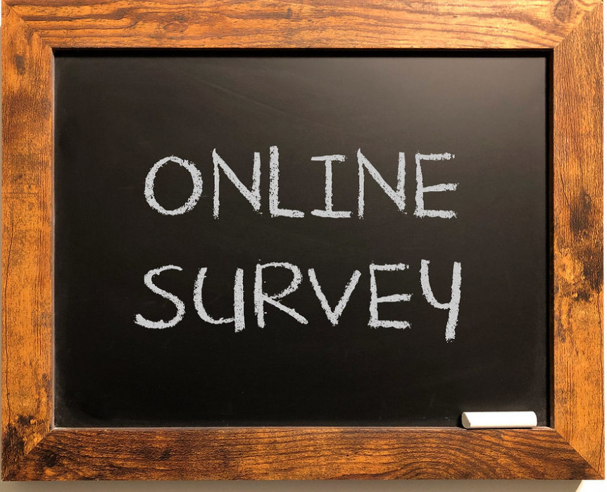 Weaslthy Affiliate Online Survey