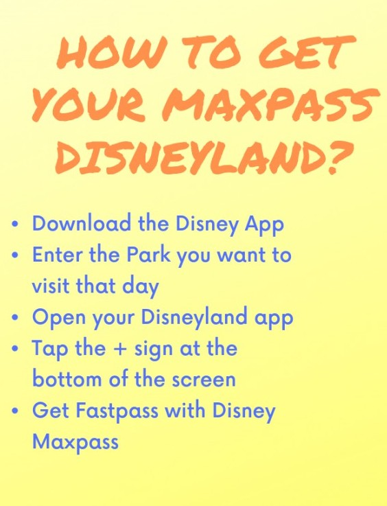 Maxpass Disneyland