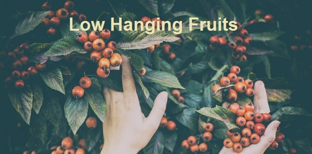 Low Hanging Fruits Sample