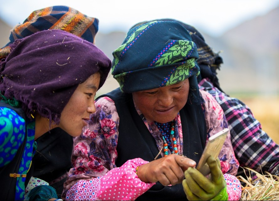 Mongolia and Yunnan field workers