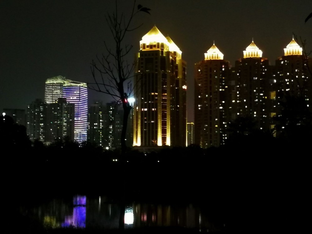 Park Night Scene of Pink Majestic buildings