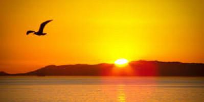 a great sunrise