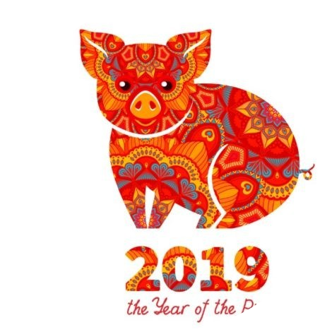 2019 year of the Pig, china