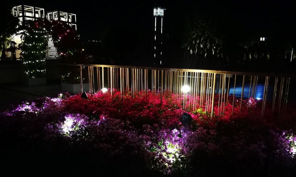 Night profile of Shenzhen CP display