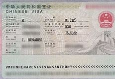 M- Business Visa