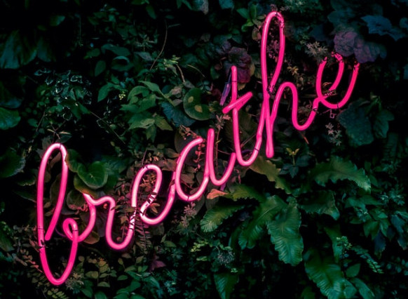 6 Tips to Surviving Mediation - Neon Sign that says Breathe