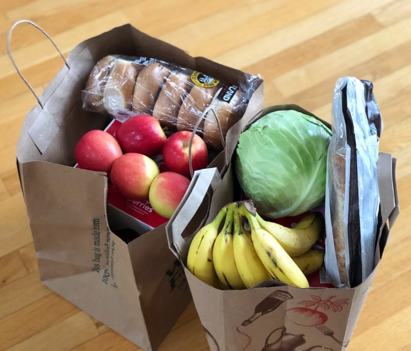 How to Build a Budget in 4 Easy Steps - Two Paper Bags Full of Groceries