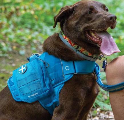 Kurgo dog pack first aid kit
